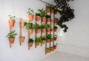 Création d'XPOT support innovant pour jardins verticaux
